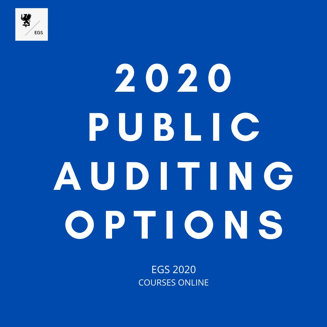 2020 Public Auditing Options